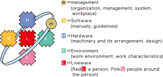 m=SHEL Model: m = Management (Organization, administration, system, workplace), S = Software (Manuals, instructions), H = Hardware (Equipment and equipment arrangement, design, etc.), E = Environment (Work environment, characteristics), L = Liveware (individuals and those in the periphery)